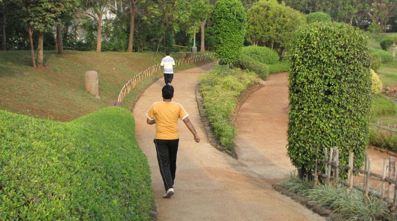 Morning Walk- The Best Health Doctor